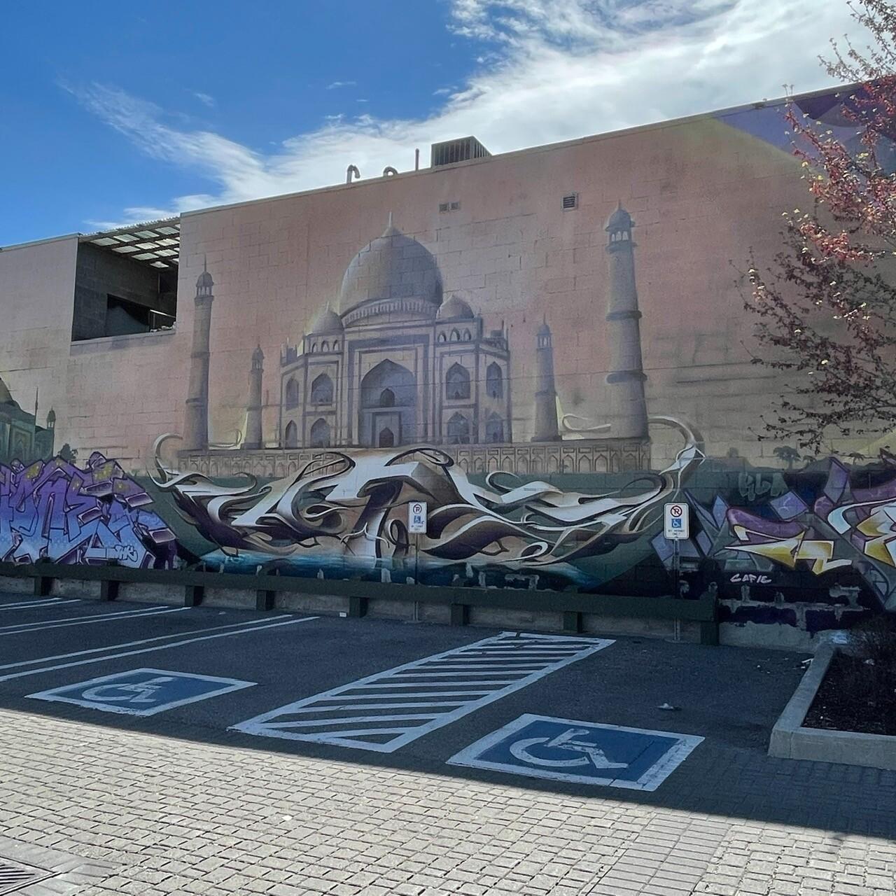 Street Graffiti - Taj Mahal